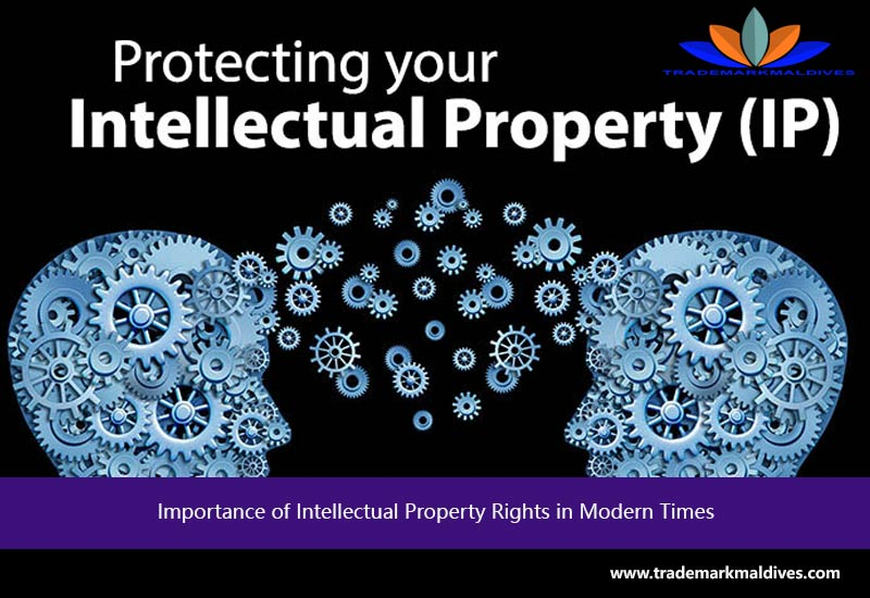 intellectual property right