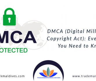 DMCA (Digital Millennium Copyright Act): Everything You Need to Know